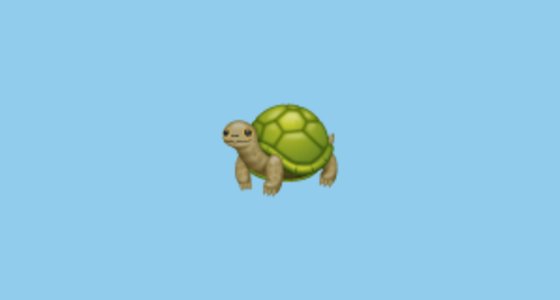 Turtle Emoji On Whatsapp 2 17