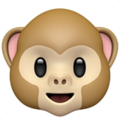 Monkey Face on Apple iOS 11.1
