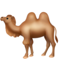 Two-Hump Camel on Apple iOS 11.3