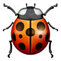 Lady Beetle on Apple iOS 11.3