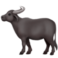 Water Buffalo on Apple iOS 11.3