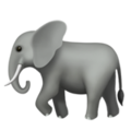 Elephant on Apple iOS 10.3