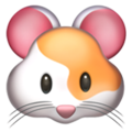 Hamster Face on Apple iOS 10.3