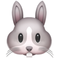 Rabbit Face on Apple iOS 10.3
