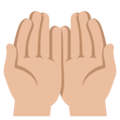 Palms Up Together: Medium-Light Skin Tone on EmojiOne 3.1