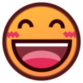 Smiling Face With Open Mouth & Smiling Eyes on emojidex 1.0.24