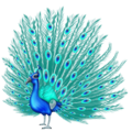 Peacock on Emojipedia 11.1
