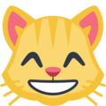 Grinning Cat Face With Smiling Eyes on Facebook 2.1