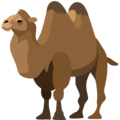 Two-Hump Camel on Facebook 2.2