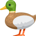 Duck on Facebook 2.2