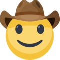 Cowboy Hat Face on Facebook 2.2.1