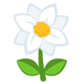 Blossom on Messenger 1.0