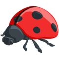 Lady Beetle on Messenger 1.0