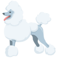 Poodle on Messenger 1.0