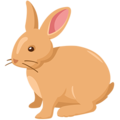 Rabbit on Messenger 1.0