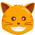Smiling Cat Face With Open Mouth on Messenger 1.0