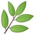 Herb on Google Android 8.0
