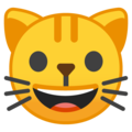 Smiling Cat Face With Open Mouth on Google Android 8.0