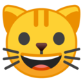 Cat Face on Google Android 8.1