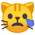 Crying Cat Face on Google Android 8.1