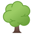 Deciduous Tree on Google Android 8.1