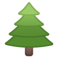 Evergreen Tree on Google Android 9.0