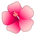 Hibiscus on Google Android 9.0