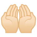 Palms Up Together: Light Skin Tone on Google Android 9.0