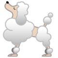 Poodle on Google Android 9.0