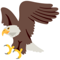 Eagle on Google Android 7.1