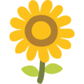 Sunflower on Google Android 7.1