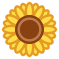 Sunflower on HTC Sense 7