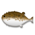Blowfish on LG G5