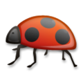 Lady Beetle on LG G5