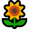 Sunflower on Microsoft Windows 10 Creators Update