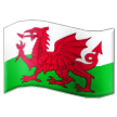 Wales on Samsung Experience 9.1