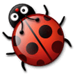 Lady Beetle on Samsung Experience 9.1