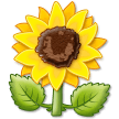 Sunflower on Samsung Experience 9.1