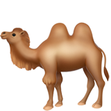 Two-Hump Camel on Apple iOS 11.2