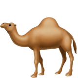 Camel on Apple iOS 11.2
