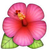 Hibiscus on Apple iOS 5.1