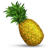 Pineapple on Apple iOS 6.0