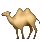 Two-Hump Camel on Apple iOS 9.3