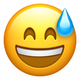 Smiling Face With Open Mouth & Cold Sweat on Apple iOS 10.0