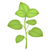 Herb on emojidex 1.0.34