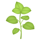 Herb on emojidex 1.0.14