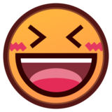 Smiling Face With Open Mouth & Closed Eyes on emojidex 1.0.14