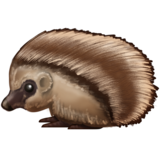 Hedgehog on Emojipedia 5.0