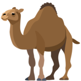 Camel on Facebook 2.0