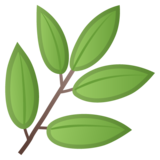 Herb on Google Android O Beta